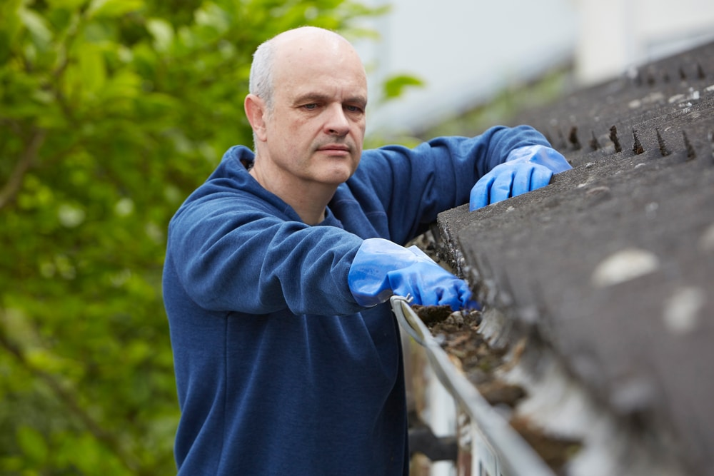 is roof cleaning a good idea